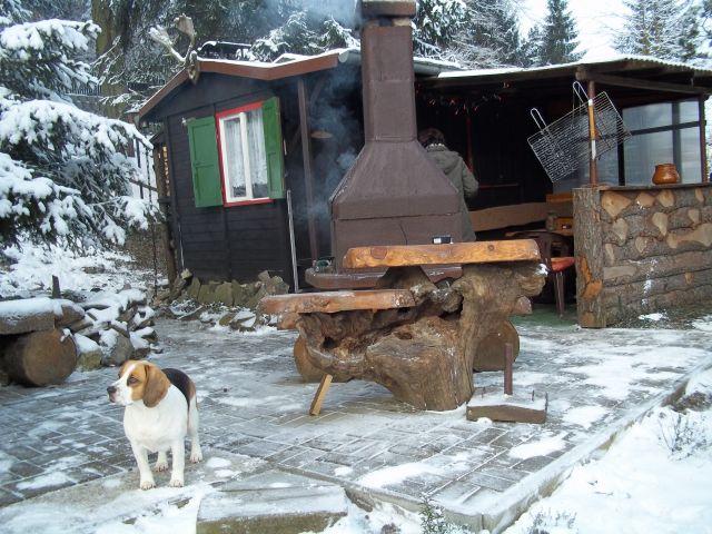 Waldhütte im Winter