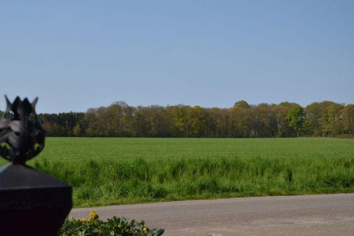Der Blick vom Gartentor auf die Felder vorne