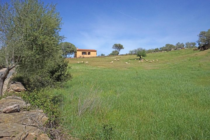 Ferienhaus in Alleinlage, abseits von Hektik