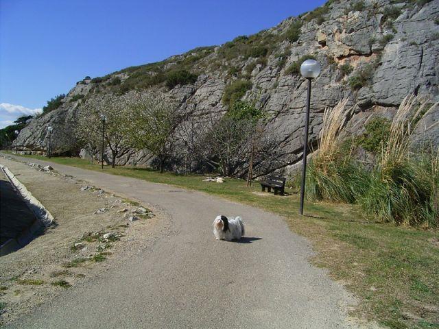 Spazierweg längs des Felsens