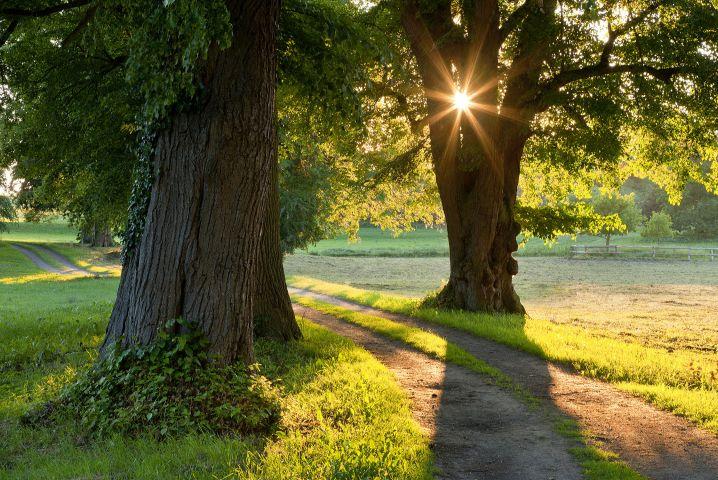 Genießen Sie die unberührte Natur