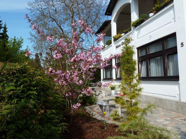 Unser Haus Ostsee im Frühjahr