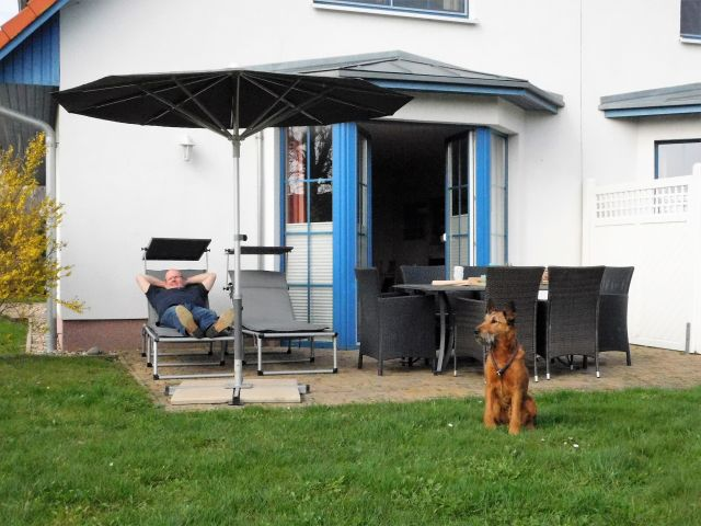 Terrasse mit Irish Terrier