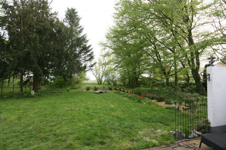 Garten vom Haus aus gesehen