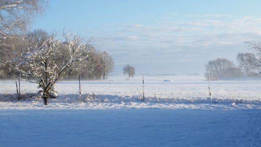 Der Gästegarten im Winter