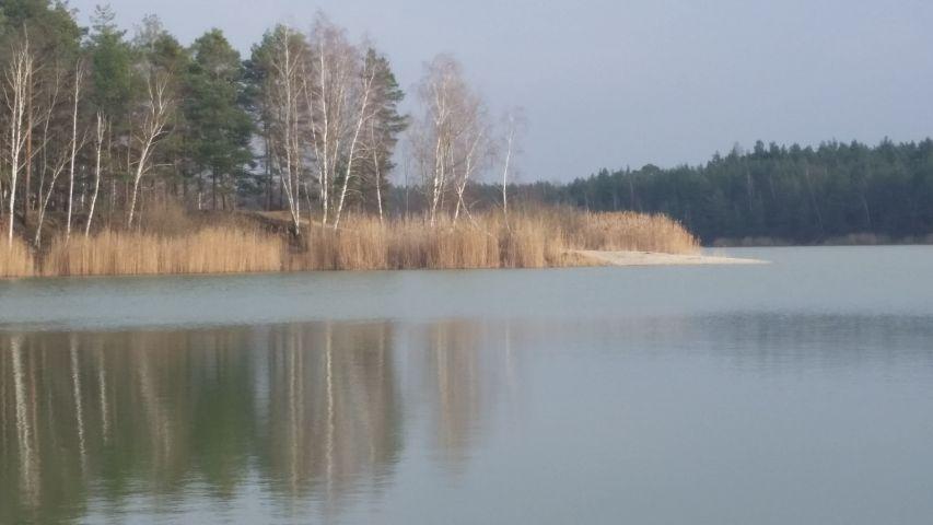 Am Rückersdorfer See