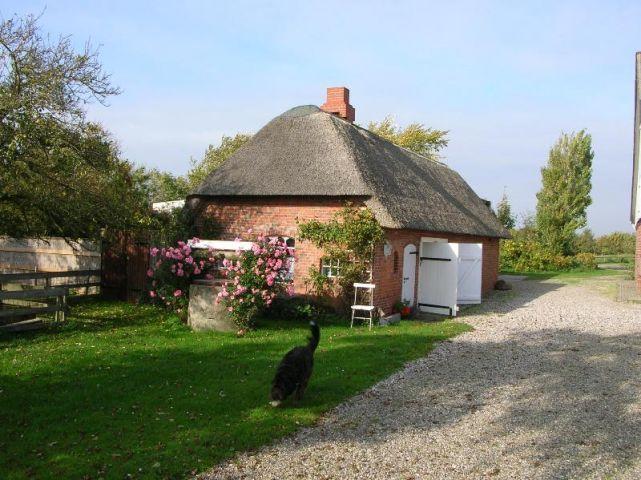 4 sterne ferienhaus freese kamin zaun sauna for Ferienhaus juist mit hund