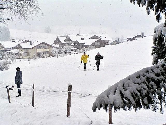 Auch Loipen und Winterwanderwege beginnen direkt hinter dem Haus (idealer Ausgangspunkt zur Entdeckung der Umgebung ganz ohne Auto !!!)
