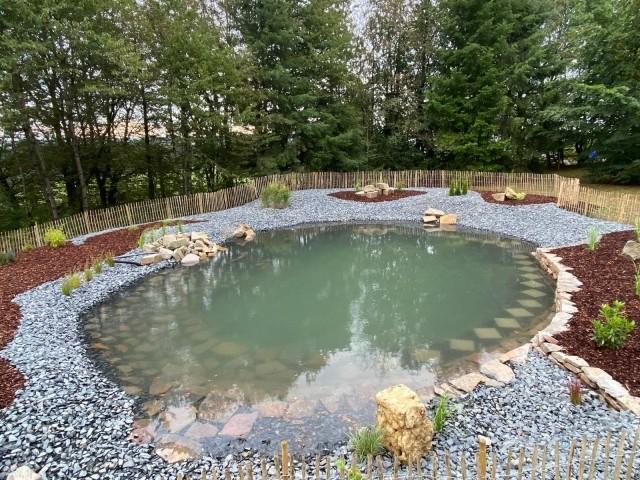 hauseigener Schwimmteich - Wasserfläche 110qm / tiefste Stelle 2m