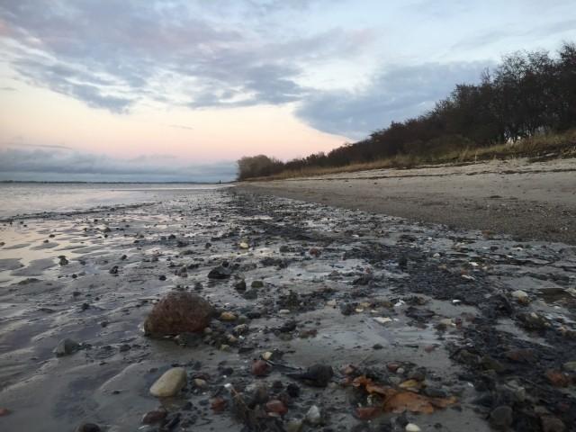 Strand am Morgen