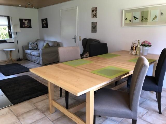 Im Wohnraum steht ein großer Tisch, Sessel und eine Couch