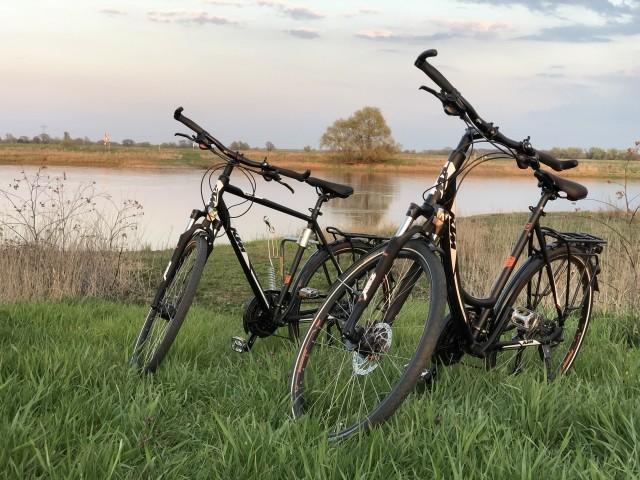 Am Elberadweg- Fahrräder zum ausleihen vorhanden!