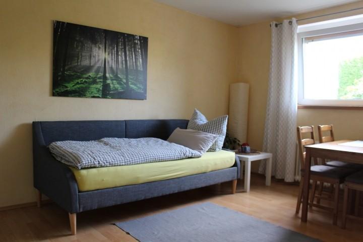 Wohnzimmer mit Einzelbett (90x200)
