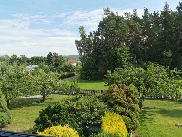Blick auf den Garten vom Balkon