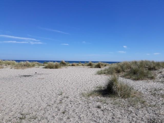 Entspannte Tage am Gammendorfer Strand