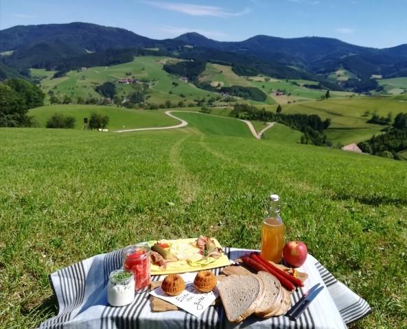 Picknick mit Weitblick