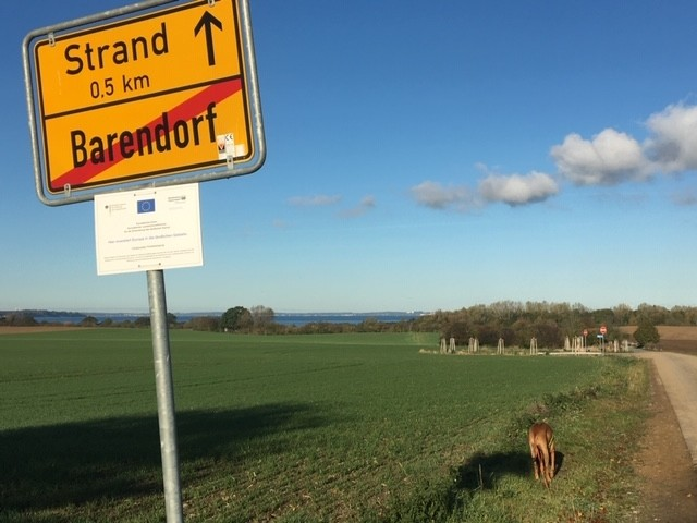 Weg zum Natur- u. Hundestrand