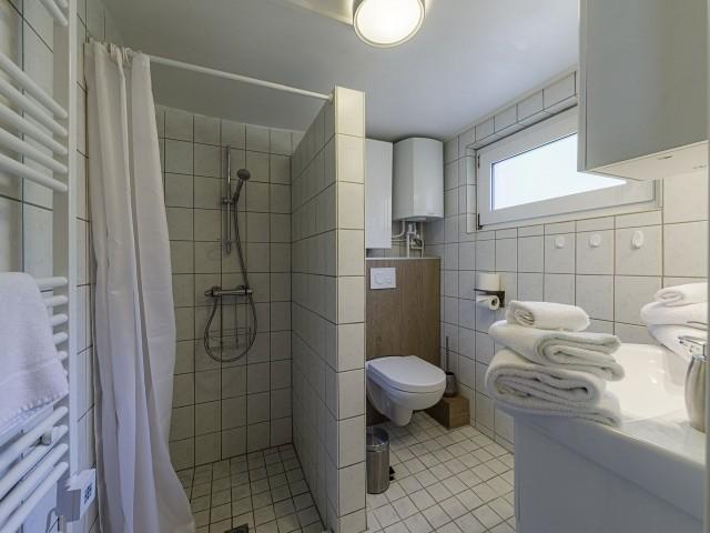 Tageslichtbadezimmer mit Dusche