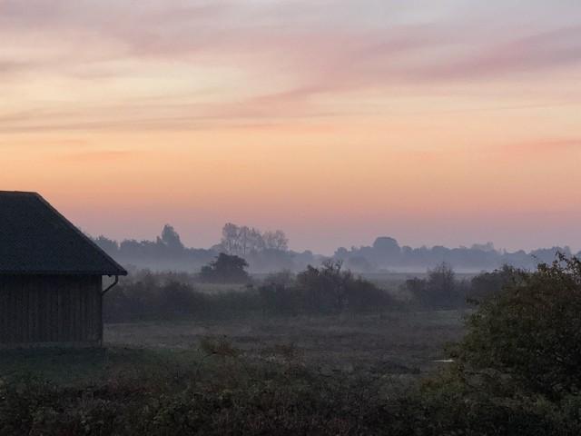 Blick vom Balkon frühmorgens