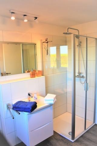 Duschbereich Bad 1 OG
