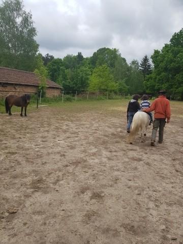 geführtes Ponyreiten