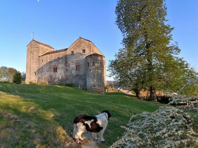 Mit der Fellnase zur Burg hoch spazieren