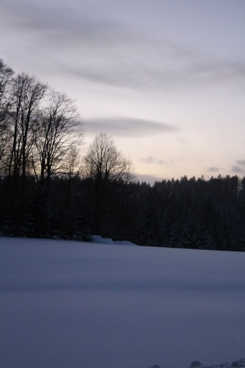 Blick auf den Nationalpark