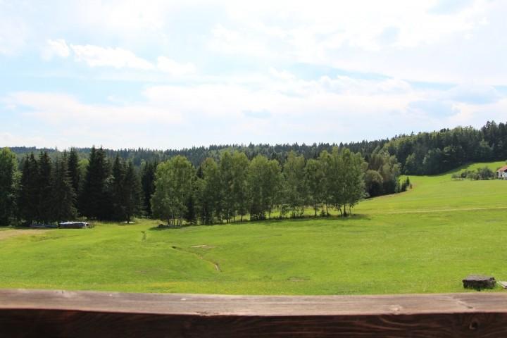 Blick auf den Nationalpark im Sommer