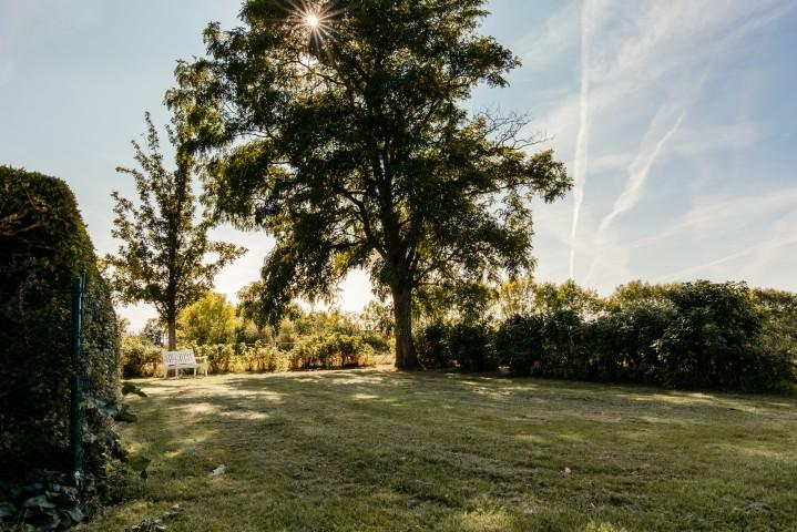Eingezäunter Gartenbereich für Ihre Vierbeiner
