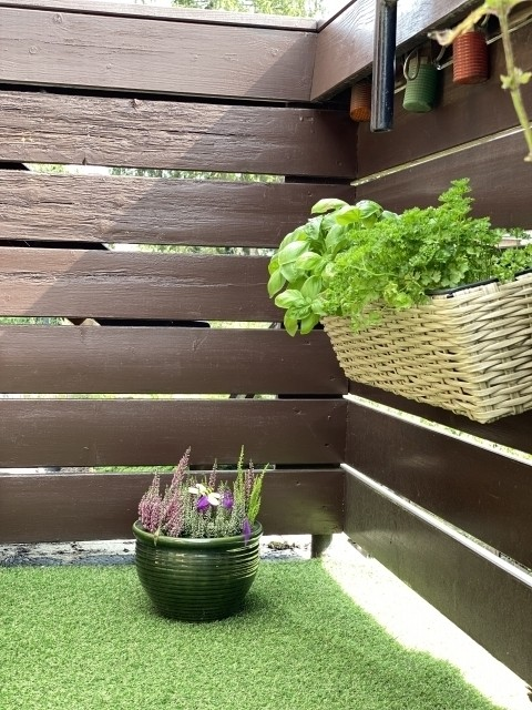 Kräuter stehen saisonbedingt zur Verfügung - frisch und grün