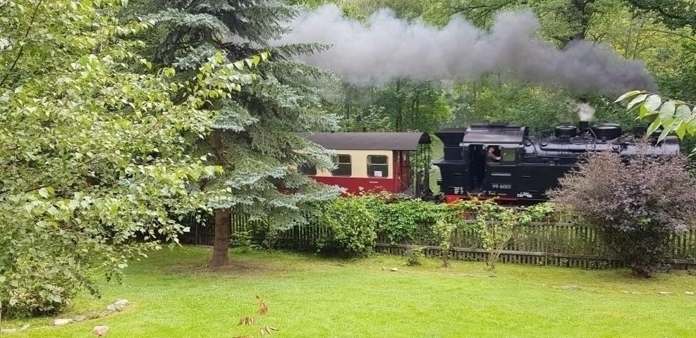 Die Dampflok fährt bis zum Brocken
