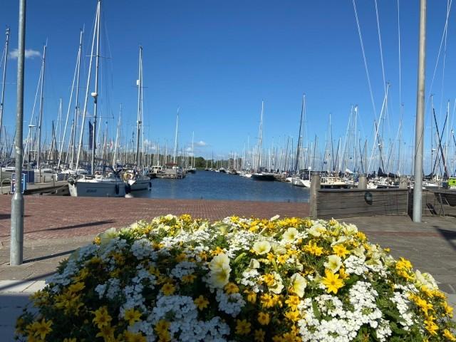 Hafen Enkhuizen