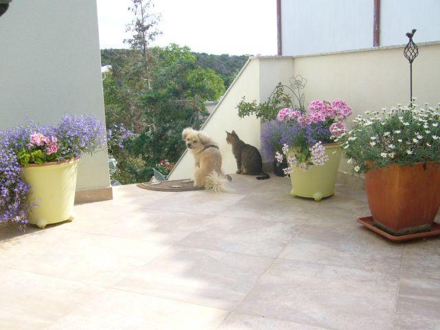 Bubi und die Katze