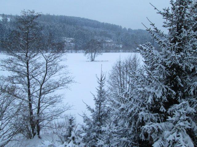 grosse Wiesen am Haus im Winter