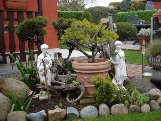 Garten mit Blick auf Terrasse LUV