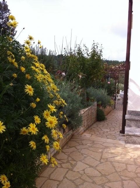 Garten deteil