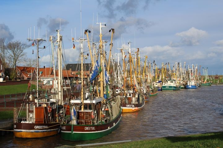 Die Krabbenkutterflotte im Hafen von Greetsiel