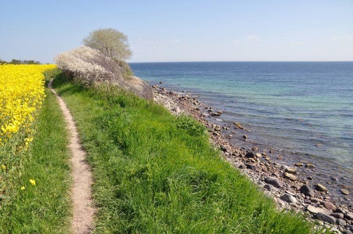 Küste Richtung Leuchtturm Staberhuk