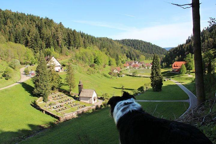 Umgebung Ferienhaus - Kaltbrunn