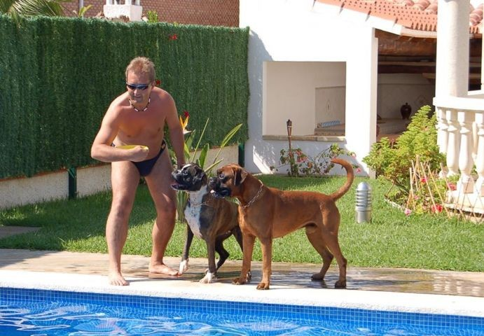 Spanien-Urlaub mit Hund