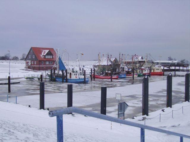 Der Hafen im Winter