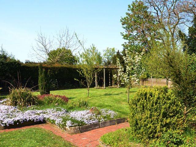 Der Blick in den hinteren Garten