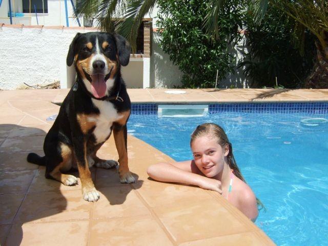 SpanienUrlaub mit Hund bis Ende Oktober