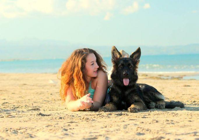 SpanienUrlaub mit Hund