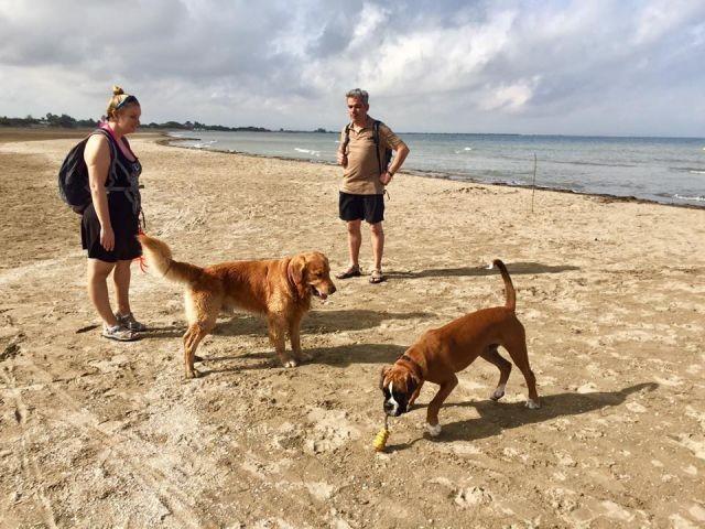 Hundestrand im November bei 24`C