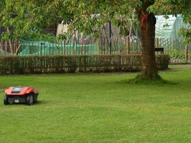 1000qm Garten