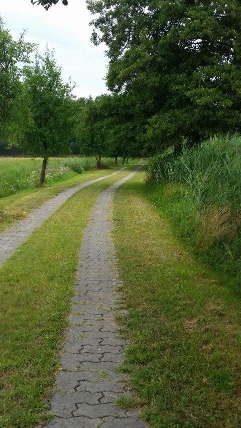 Der alte Treidelweg am Kanal ist autofrei