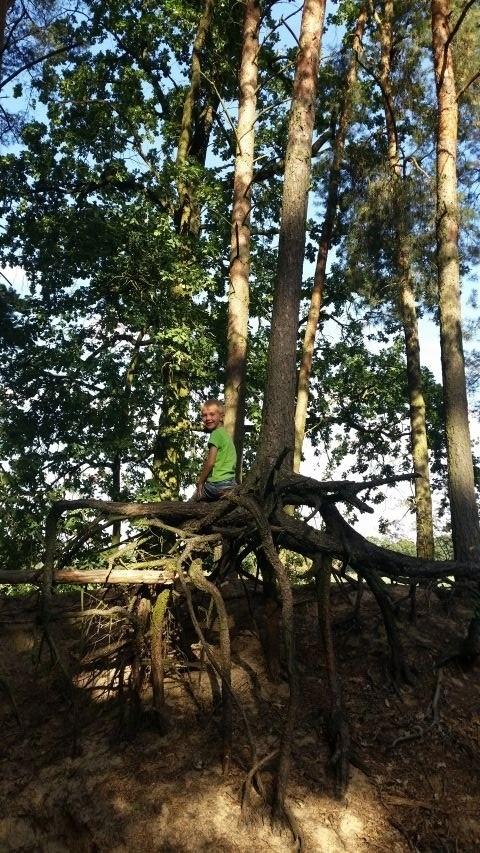 Lange Waldspaziergänge beginnen gleich hinterm Haus
