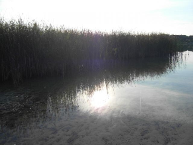 Ranziger See