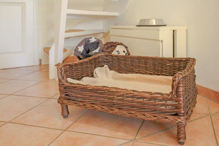 Bett für die Vierbeiner ;-)